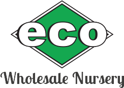 Eco Wholesale Nursery, Logo